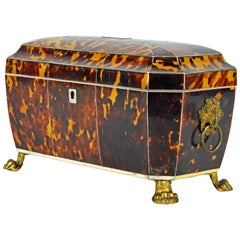 Superior Early 19th Century Georgian Tortoiseshell Tea Caddy on Lion's Paw Feet
