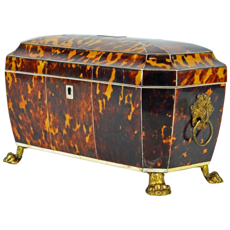 Superior Early 19th Century Georgian Tortoiseshell Tea Caddy on Lion's Paw Feet 1