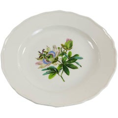 Early 20th Century Meissen Plate with Passion Flower