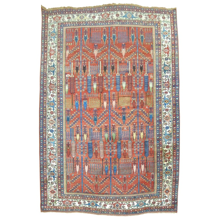 Antique Persian Bidjar Willow Tree Rug For Sale At 1stdibs