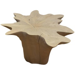 Andrianna Shamaris Bleached Teak Wood Organic Coffee Table