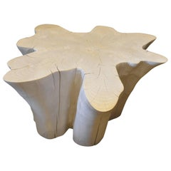 Andrianna Shamaris St. Barts Bleached Teak Wood Organic Coffee Table