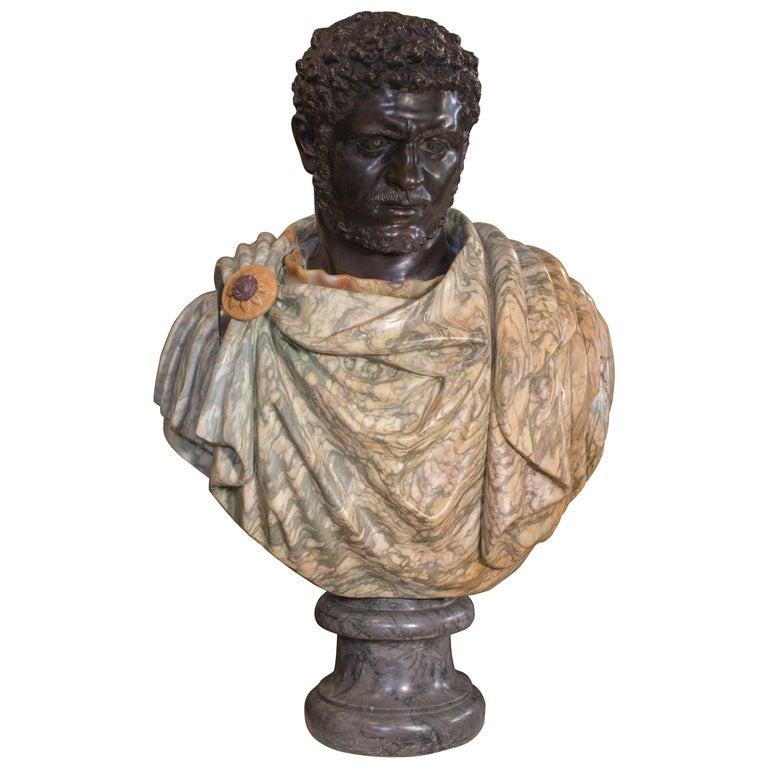 19th Century Roman Marble Bust Sculpture of Emperor Caracalla in Specimen Marble