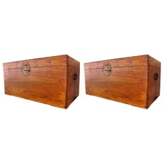 Camphor Wood Trunk Set of Two