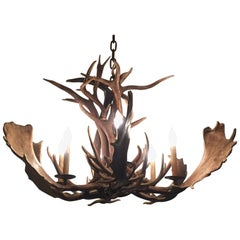 Fantastic Deer and Moose Antler Chandelier