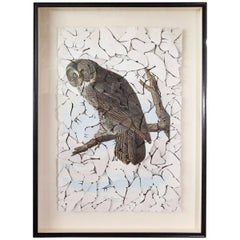 Butterfly Box 'Great Cinereous Owl' Print