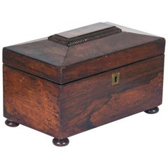 Antique Tea Caddy Rosewood Tea Caddy Regency, Scotland, 1820