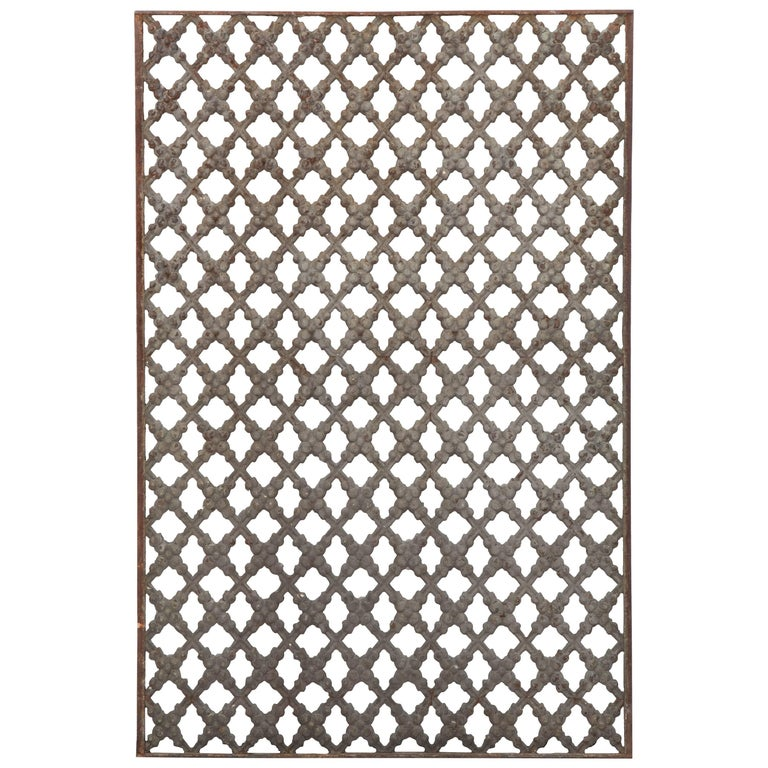 French Early 20th Century Cast Iron Grille
