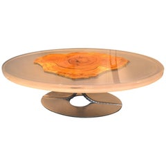 Contemporary Epoxy Resin Oval Coffee Table with a Slice of Olive Tree Trunk