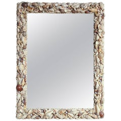 Very Nice Shell Mirror For Sale At 1stdibs