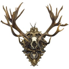 19th Century Austrian Rothschild Red Stag & Roe Deer Trophy from Bad Ischl