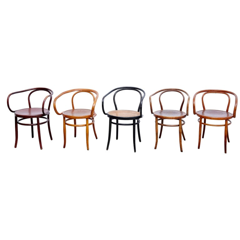 Set of Five Armchair after Thonet, circa 1940