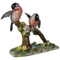 Antique English Staffordshire Porcelain Eurasian Bullfinch by J.T. Jones