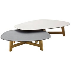 Moroso Phoenix Coffee Table with Wood Base and Various Color Top Options