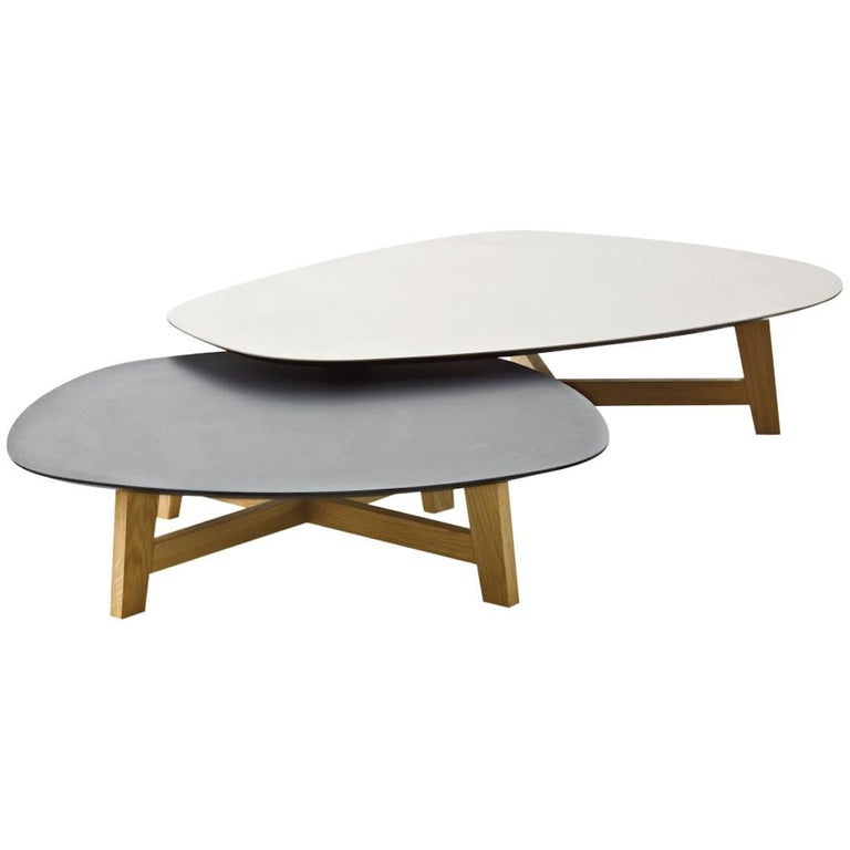 Moroso Phoenix Coffee Table With Wood Base And Various Color Top Options For
