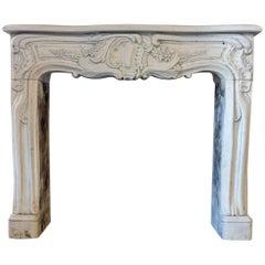19th Century Ornamental Limestone Fireplace in Louis XV Style