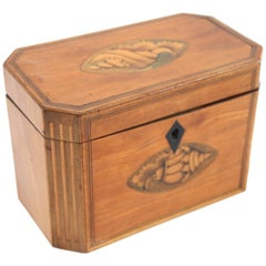 Late 18th Century Octagonal Tea Caddy with Conch Shell Inlay