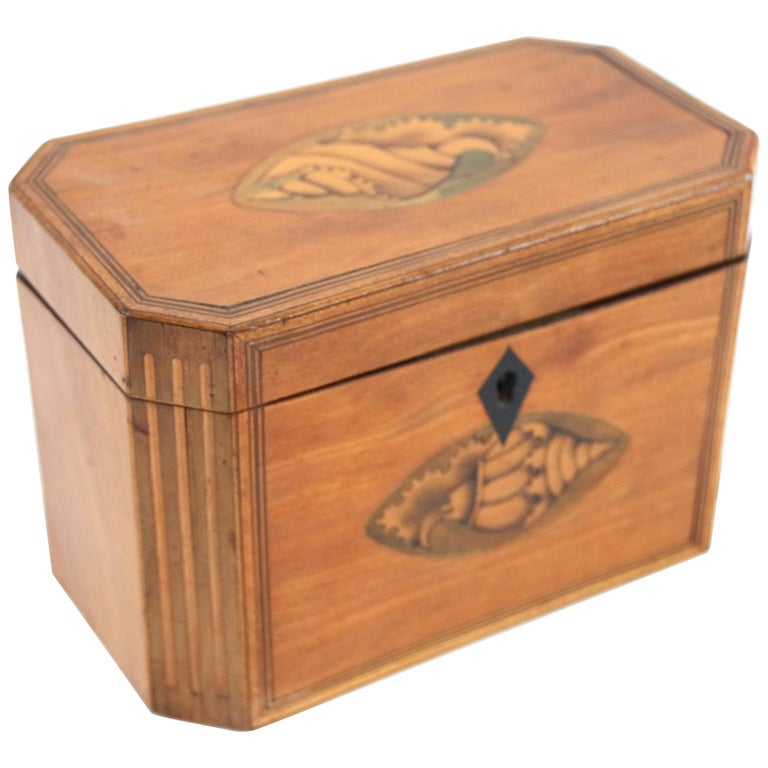 Late 18th Century Octagonal Tea Caddy with Conch Shell Inlay For Sale