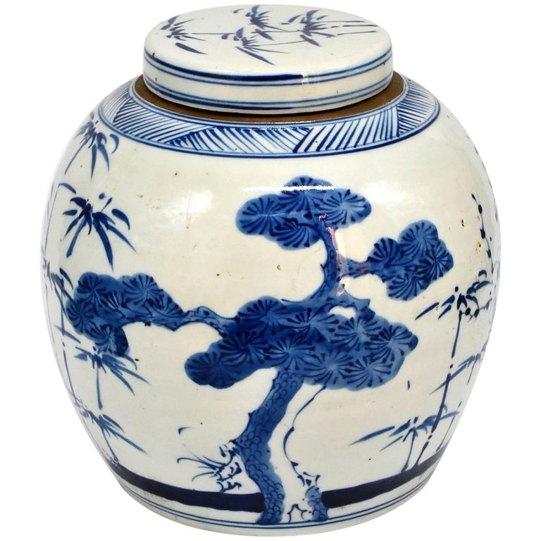 Chinese Blue and White Porcelain Ginger Jar, Hand-Painted