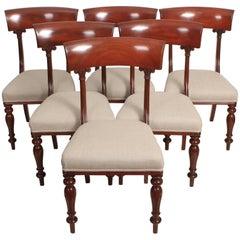 Set of Six William IV Cuban Mahogany Dining Chairs