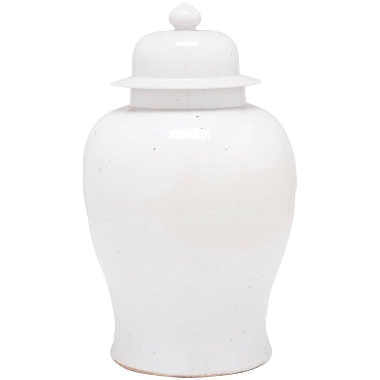 Chinese Small Cloud Baluster Jar