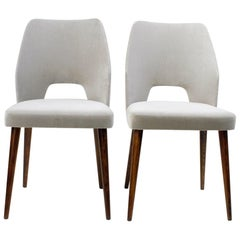 Austrian 50s Walnut and grey Velvet Dining Chairs in the Style of Oswald Haerdtl