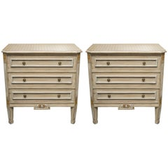 Pair of Louis XVI Style Decorative Painted Chests