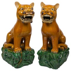 Pair of Chinese Lion Dogs
