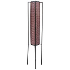 French Floor Lamp Attributed to Mathieu Mategot