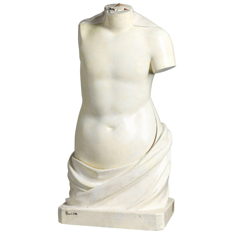 19th Century Didactic Torso Model For Sale at 1stdibs