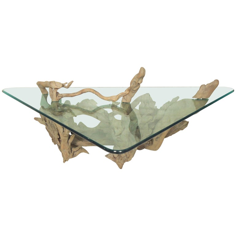 Unique driftwood glass coffee table for sale at 1stdibs for Driftwood coffee table