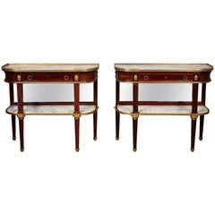 19th Century Pair of Louis XVI Style Dessert Consoles by Maison Krieger, Paris