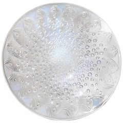 Rene Lalique Opalescent Glass Salver 'Roscoff'