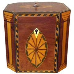 Single Georgian Style Tea Caddy