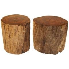 Oak Log Section with Marine Varnish Top