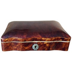 19th Century Tortoiseshell Box