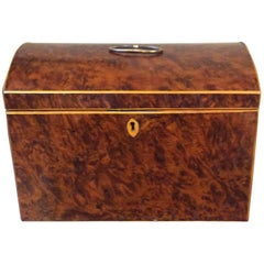 English Burl Yew Wood Tea Caddy with Dome Top