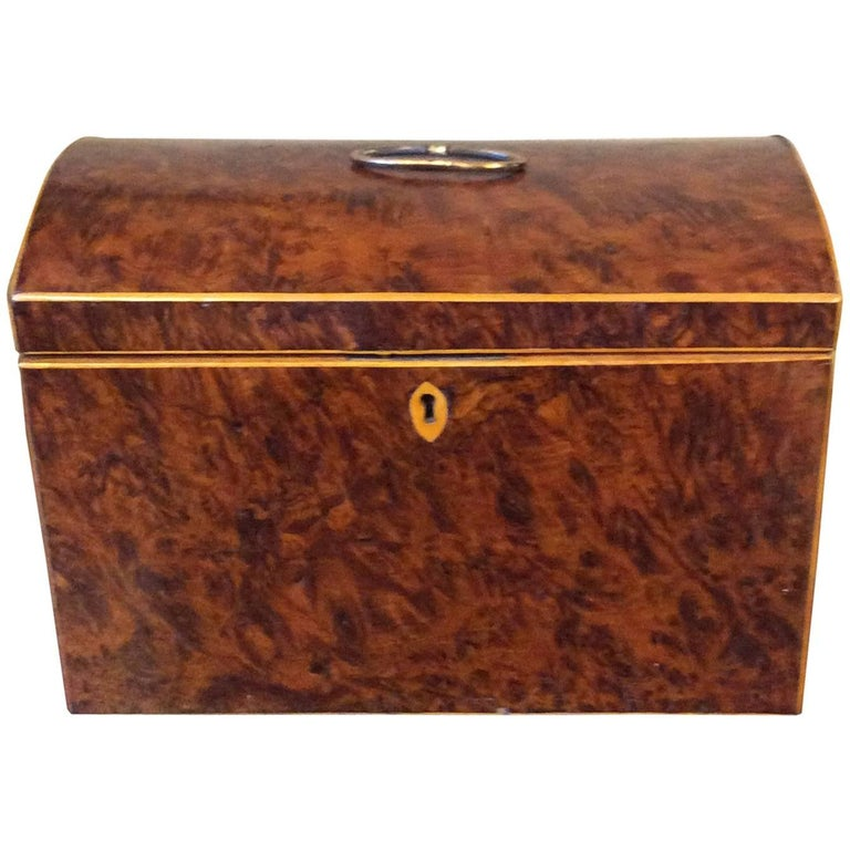 English Burl Yew Wood Tea Caddy With Dome Top For Sale
