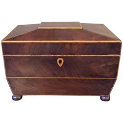 19th Century Tea Caddy with Brass Handles