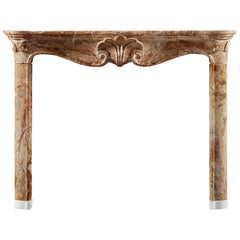 Antique 18th Century Louis XV Fireplace in Jasper Marble