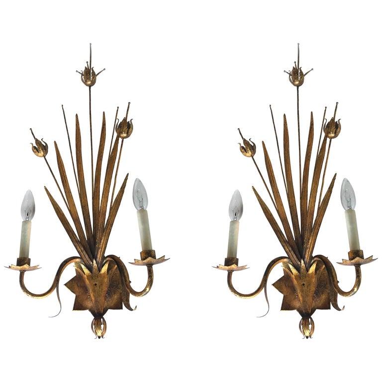 Pair of Ferrocolor Sconces