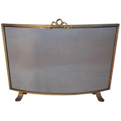 Antique 19th Century Gilt Bronze and Wrought Iron Firescreen with Mint Wire Mesh