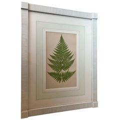 19th Century French Fern Lithograph