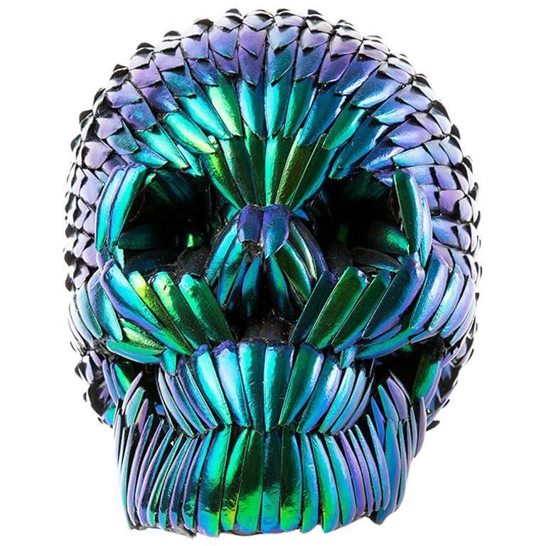 Skull Made of Beetle Wings