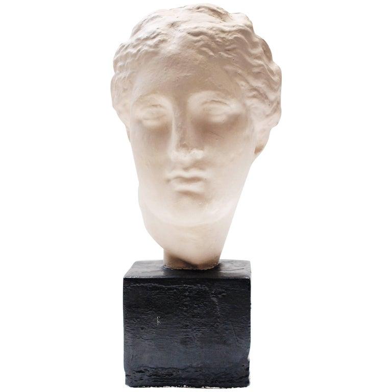 Plaster Bust of a Roman Empress