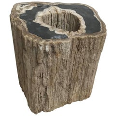 Large Petrified Wood Side Table with Hole All the Way through