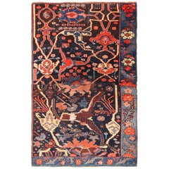 Small Collectible Antique Persian Bidjar Sampler Rug