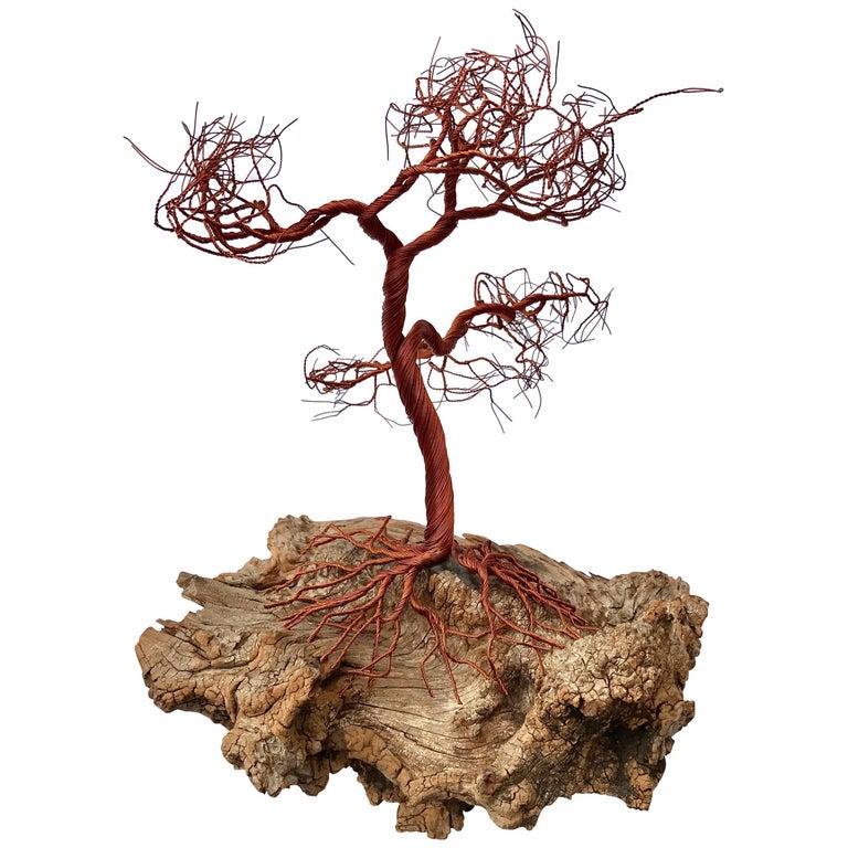 Organic Modern Sculpture of Copper Tree on Driftwood Base