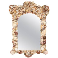 Shell Mirror in the Manner of Anthony Redmile