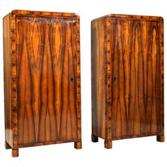 Pair of Biedermeier Cabinets Museum Quality, CZ circa 1830